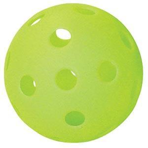 プロマーク バッティング上達練習球2個1組 HTB-2P tra16|baseman