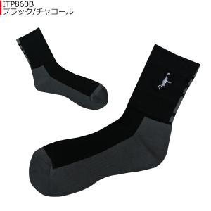 「1点限りネコポス対応」インザペイント IN THE PAINT パネルソックス ITP860B バスケ 靴下|basketballpro|02