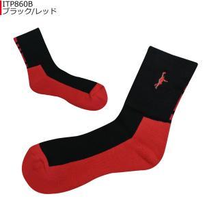 「1点限りネコポス対応」インザペイント IN THE PAINT パネルソックス ITP860B バスケ 靴下|basketballpro|05
