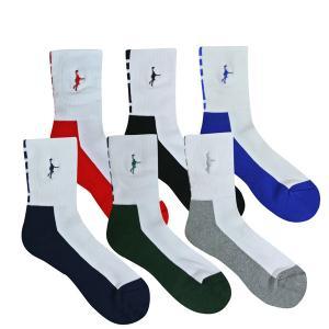 「1注文につき1点限りネコポス(250円)可能」インザペイント IN THE PAINT パネルソックス ITP860W バスケ 靴下