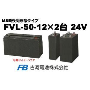 FVL-50-12×2台【古河電池】《送料無料》制御弁式据置...