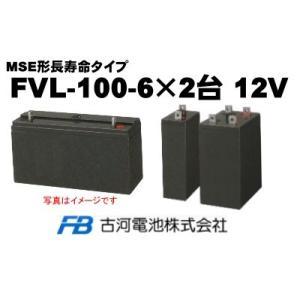 FVL-100-6×2台【古河電池】《送料無料》制御弁式据置...