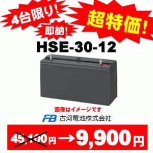 処分価格《在庫品》【古河電池】HSE30-12×9台《送料無料》HSE-30-12制御弁式据置鉛蓄電...