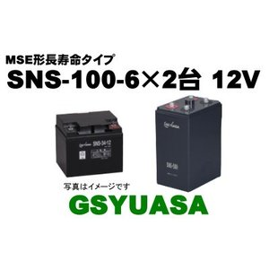 SNS100-6×2台(100-6)【GSユアサ】《送料無料...