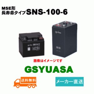 【GSユアサ】《送料無料》SNS-100-6長寿命制御弁式据...