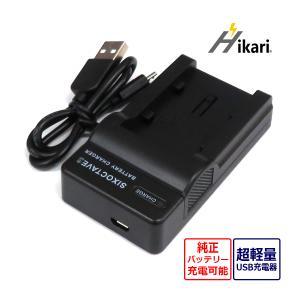 送料無料ビクター急速互換USB充電器 AA-VG1対応バッテリーBN-VG107 / BN-VG108 / BN-VG109 / BN-VG114 / BN-VG119 / BN-VG129|batteryginnkouhkr