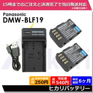 Panasonic パナソニック DMW-BLF19E / DMW-BLF19 互換バッテリー 2個と 互換USB充電器 の3点セット DMC-GH3 / DMC-GH4 / DC-GH5 / DC-G9 ルミックス|batteryginnkouhkr