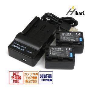 パナソニック VW-VBT190-K 互換バッテリー2個& 充電器 USBチャージャー VW-BC10-K の3点セット HC-WX970M / HC-WX990M / HC-WXF990M batteryginnkouhkr
