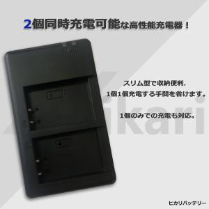 送料無料パナソニックVW-VBT190互換デュアルダブルUSB充電器HC-V620M HC-V550M HC-V520M HC-V480M HC-V360M コンセント充電用ACアダプター付き (a1) batteryginnkouhkr 06