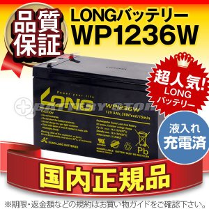 UPS(無停電電源装置) WP1236W・初期補充電済(産業用鉛蓄電池) 新品 LONG 長寿命・保証書付き Smart-UPS 750 など対応 サイクルバッテリー batterystorecom