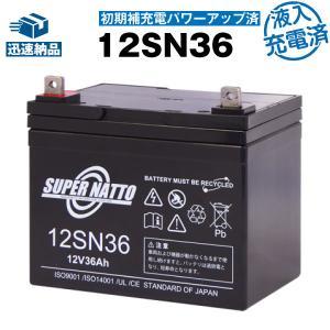 12SN36 初期補充電済 純正品と完全互換 安心の動作確認済み製品 SEB35対応 バッテリー溶接機に対応 安心保証付き 在庫あり・即納|batterystorecom