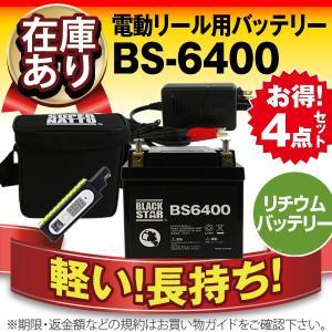 その他リールパーツ ST5000 電動リール対応 フィッシング用 お得4点セット 充電器+リチウムバッテリー(5000mAh)+USBチャージャー+防水キャリーケース|batterystorecom