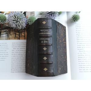 革の背表紙の小説本 フランスの古書   フランスアンティーク