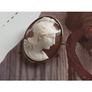 ヴィクトリアン シェルカメオ 女神ミネルヴァ(アテナ)  イギリスアンティーク