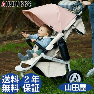ベビーカー バギー 新生児 A型 エアバギー ココプレミア フロムバース AIRBUGGY 送料無料|bb-yamadaya