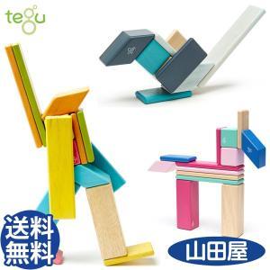 積み木 つみき テグ マグネット ブロック 木製 天然木 知育玩具 14ピース tegu DADWAY 送料無料|bb-yamadaya