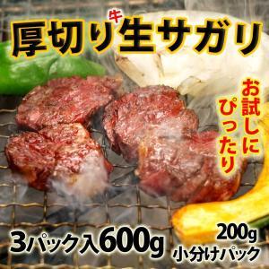 (BBQ バーべキュー)焼き肉 牛肉 厚切り生サガリ 600g(200g×3) 冷蔵 焼肉|bbq