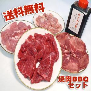 焼き肉セット カルビ 牛肉 豚肉 鶏肉 自家製タレ付属 1.4kg 冷凍便発送 (BBQ バーべキュー)焼肉|bbq