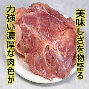焼肉  鶏もも 五穀味鶏 500g (BBQ バーベキュー 焼き肉)|bbq
