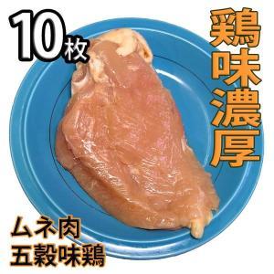 鶏肉 塊肉 鶏むね肉 五穀味鶏 10枚 冷凍 真空パック(ブロック かたまり)|bbq