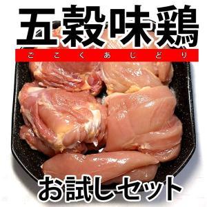 鶏肉 塊肉 鶏もも肉2枚 鶏むね肉2枚 ササミ2本 五穀味鶏 お試し セット 冷凍 真空パック(ブロック かたまり)|bbq