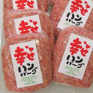 幸せハンバーグ 冷凍 1個 豚肉(やまざきポーク青森県産)|bbq
