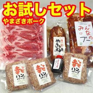 豚肉セット 国産 (やまざきポーク青森県産) (お試し 食べ比べ) 4000 冷凍|bbq