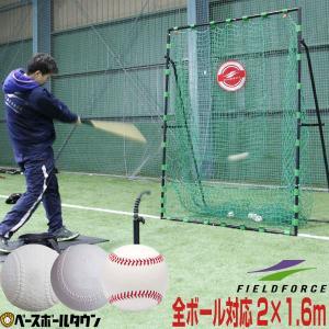 野球 バッティングネット 硬式 軟式 ソフトボール対応 2m×1.6m ターゲット付き 練習用品 FBN-2016H フィールドフォース ラッピング不可|bbtown