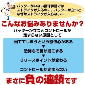 野球 ダミーくん バッター人形 ジュニア用 少年 収納バッグ付 投球 ピッチング 練習用品 FDM-151 フィールドフォース|bbtown|02