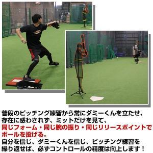 野球 ダミーくん バッター人形 ジュニア用 少年 収納バッグ付 投球 ピッチング 練習用品 FDM-151 フィールドフォース|bbtown|03
