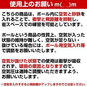 野球 練習 アイアンサンドボール 軟式M・J号サイズ 重さ約3倍 インパクトパワーボール FIMP-681J FIMP-721M フィールドフォース|bbtown|08