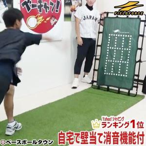 野球 壁あてネット 投球・守備練習用 ピッチング 壁ネット 練習用品 FKB-1384G フィールドフォース|bbtown
