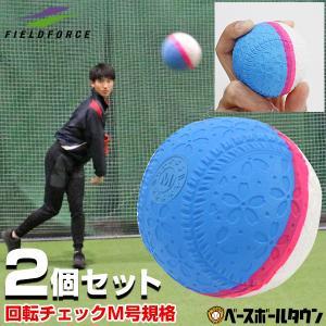 フィールドフォース 回転チェックボール M号 2個セット 練習球 一般向け 大人 練習用 練習ボール M球 M号ボール FNB-721MK|bbtown