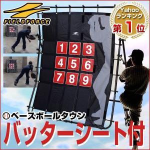 ピッチングネット 軟式野球ボール ストラックアウト 投球 FPN-1311 フィールドフォース ラッピング不可