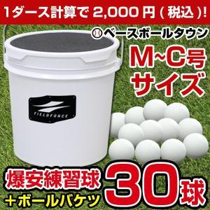 軟球の打感そのまま トス専用ボール×30球&座れるバケツ フィールドフォース ラッピング不可
