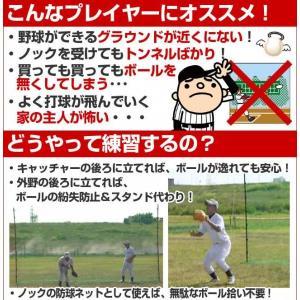 野球 バックネット 軟式用 収納バッグ付き 防球ネット 保護用ネット FBN-5030BN2 フィールドフォース ラッピング不可|bbtown|02