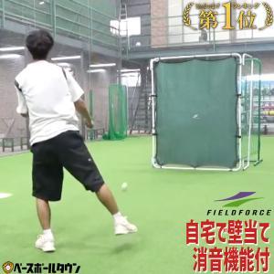 投球 守備練習用 壁ネット リアル 壁あてネット フィールドフォース ラッピング不可