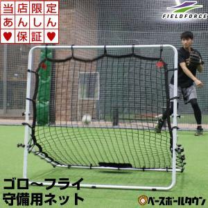 野球 守備・投球練習用ネット フィールディングネット2 守備用ネット 練習用品 FPN-2010F2 フィールドフォース ラッピング不可|bbtown