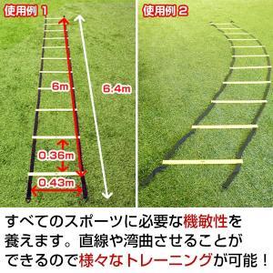 トレーニング ラダー 6m 連結可能 トレーニングマニュアル付 基礎体力 野球 サッカー フットサル 練習用品 FST-600R フィールドフォース|bbtown|02