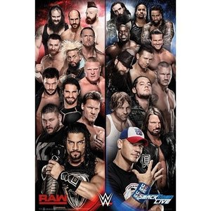 WWE RAW vs. スマックダウン マキシポスターです。
