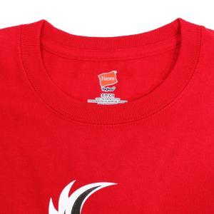 Tシャツ XXLサイズ:DRAGON GATE 暁-AKATSUKI-/鷹木信悟 Logo レッド|bdrop|04