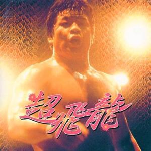 新日本プロレス NJPW 藤波辰爾 超飛龍 CD bdrop