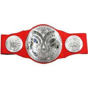 WWE マテル RAWタッグ王座トイベルトです。 サイズ:プレートサイズ 約 19.6 x 19 c...