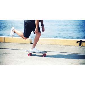☆アウトレット☆ DOPPELGANGER(ドッペルギャンガー) DSB-17 ミニクルージング スケートボード|be-s-outletstore