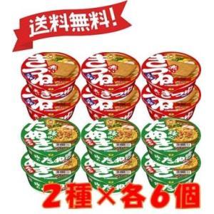 マルちゃん 赤緑2種 各6個(計12個セット) beads-store