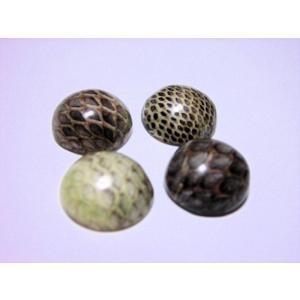 半丸 ヘビ皮封入ビーズ 14mm(2ヶ)|beadsshopj4