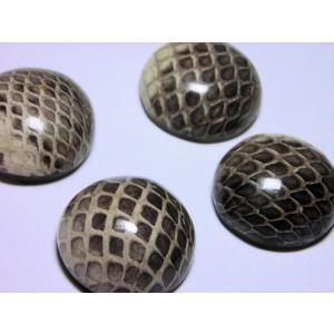 半丸 ヘビ皮封入ビーズ 21mm(2ヶ)|beadsshopj4