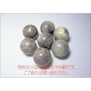ヘビ皮封入ビーズ 22mm|beadsshopj4
