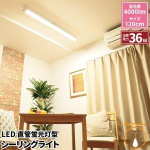 LED蛍光灯 40w形 120cm ベースライト ライティングレール ダクトレール 昼白色 FLX402Y-CLA ビームテック|beamtec-forbusiness