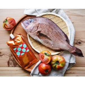 【 大サイズ・160g 】離乳食 無添加 オーガニック 有機無農薬 野菜 天然だし BabyOrgente 鯛&トマトおじや 1袋 beans-japan